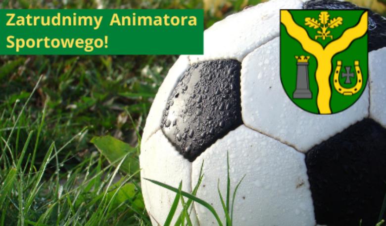 Zatrudnimy Animatora Sportowego