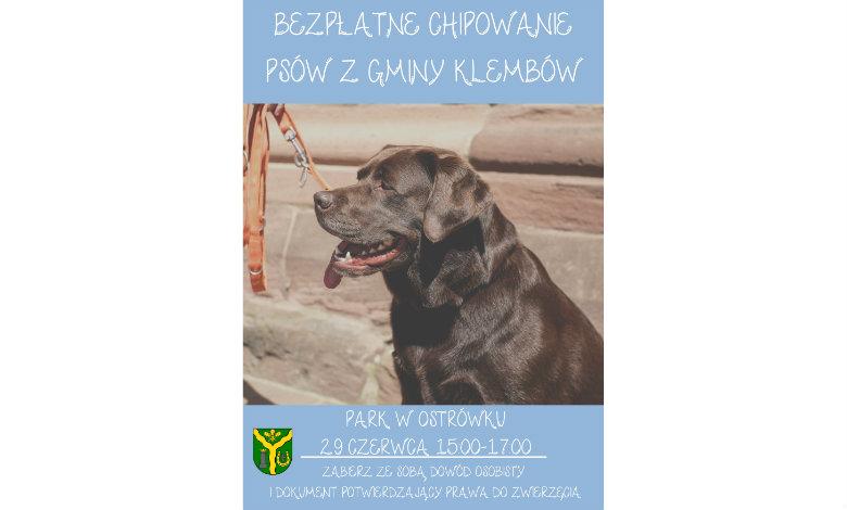 Bezpłatne czipowanie psów z Gminy Klembów